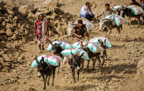 البرلمان العربي يدعو لفك الحصار الخانق على المدنيين في تعز