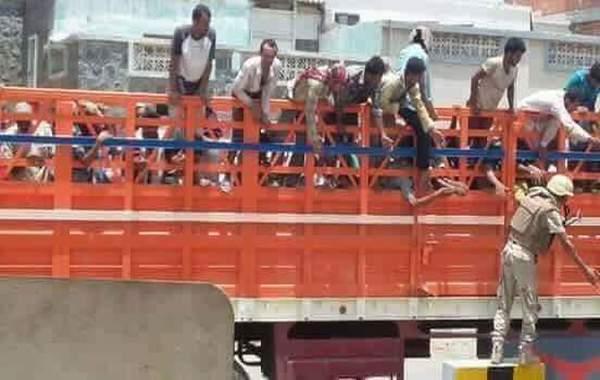 عودة حملة ترحيل عمال شماليين من عدن.. ومقطع فيديو يثير ردود واسعة (شاهد)