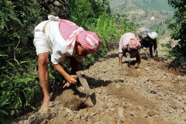 ريمة.. في جبال اليمن النائية ما زال التقدم والحرب بعيدين