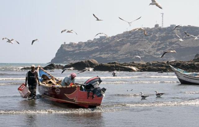 وزير الثروة السمكية يتابع توريد 400 قارب للصيادين في عدد من المحافظات