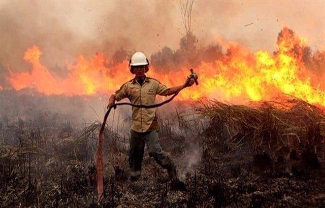الجيش الإندونيسي يأمر بإطلاق النار على من يشعل حرائق عمداً في الغابات