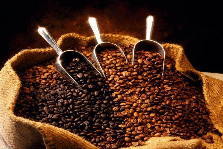 غداً.. مهرجان احتفالي بصنعاء بمناسبة اليوم العالمي للقهوة