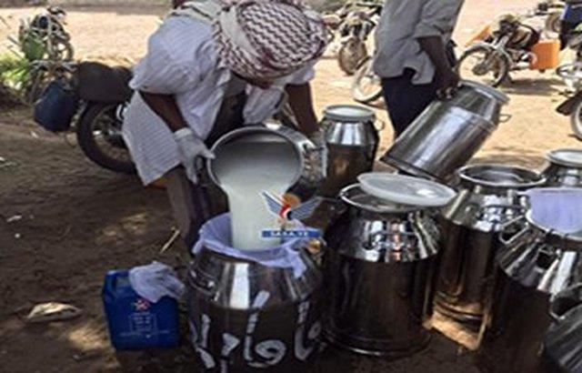 الحديدة: منظمة الفاو توزع أدوات لصغار منتجي الحليب