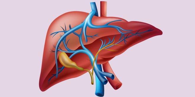 اكتشاف جديد يمنح مرضى سرطان الكبد أملاً في الحياة