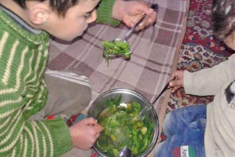 الجوع يجبر سكان قرية بمحافظة صنعاء على أكل أوراق الشجر