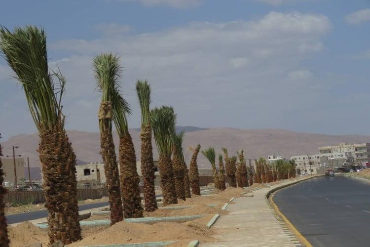 مأرب: صندوق النظافة ينفذ المرحلة الثانية من مشروع التحسين بكلفة 30 مليون ريال