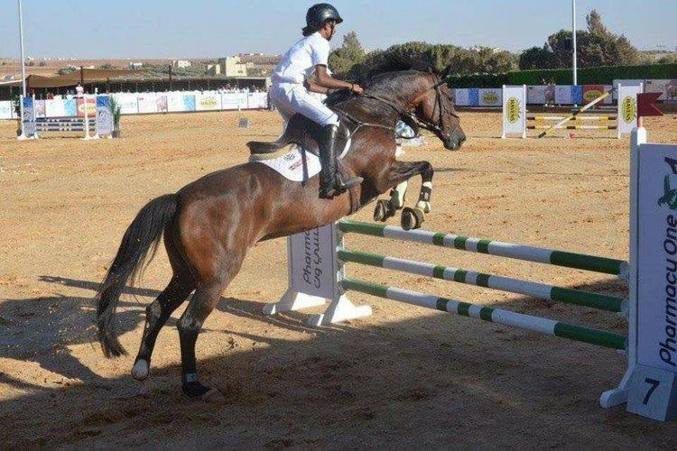 الفارس اليمني قاسم شرف يحرز بطولة شعبان الدولية لقفز الحواجز في الأردن