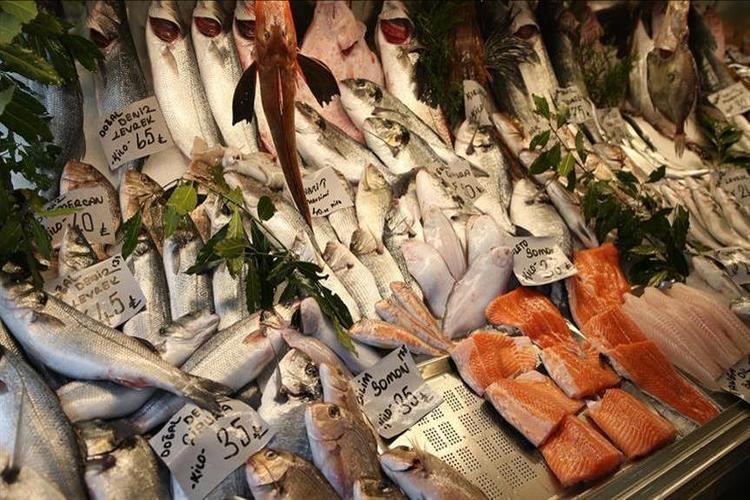 دراسة أسترالية: تناول الأسماك مرتين أسبوعياً يحد من إصابة الأطفال بالربو