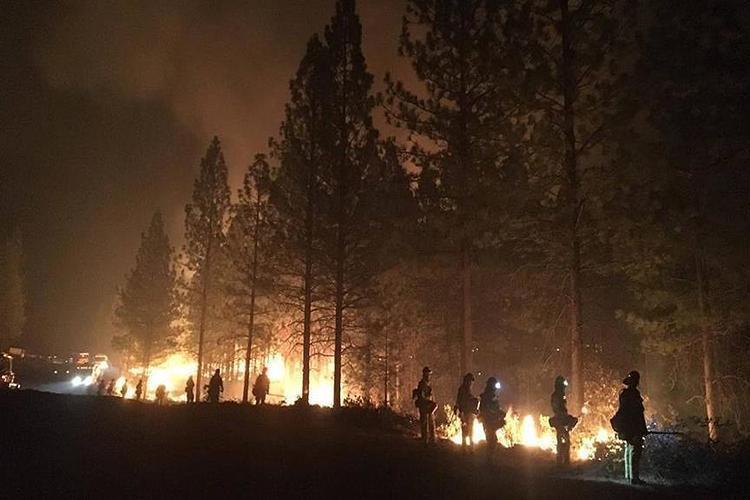 ارتفاع حصيلة ضحايا حرائق الغابات في ولاية كاليفورنيا الأمريكية إلى 79 قتيلاً
