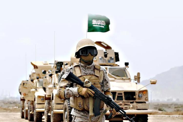 الحكومة السعودية تخصص 51 مليار دولار للإنفاق العسكري في 2019