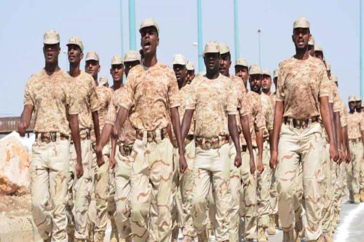 مقتل جندي وإصابة 3 آخرين في حضرموت أثناء مداهمة في الشحر