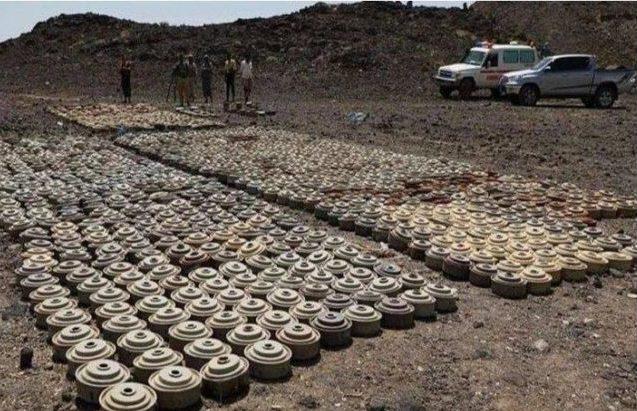تقرير حول الألغام في اليمن: آلاف الضحايا وتهديد حياة ملايين آخرين