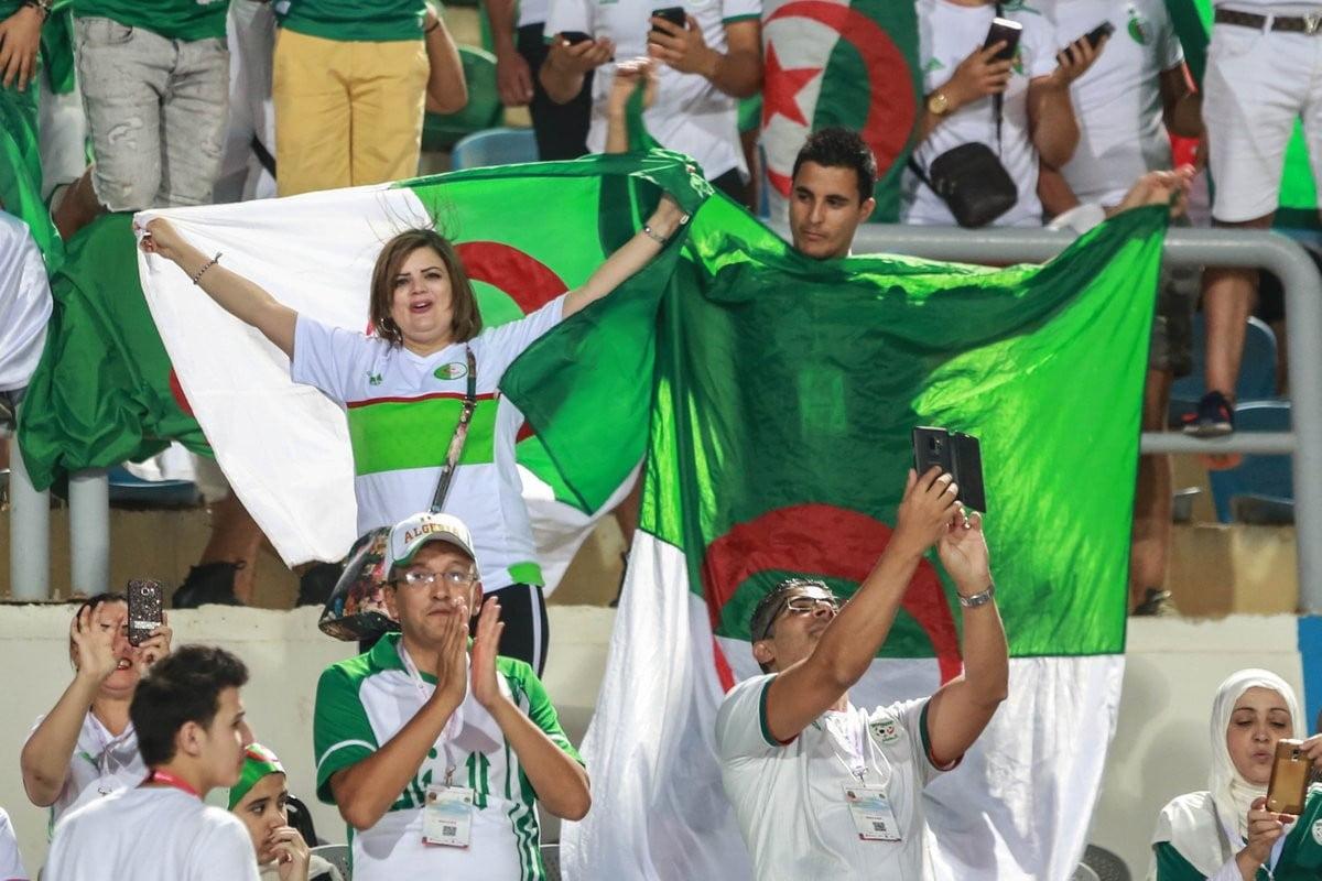 تحديد المداخل والمواعيد.. تعليمات هامة لجماهير مباراة الجزائر والسنغال في القاهرة