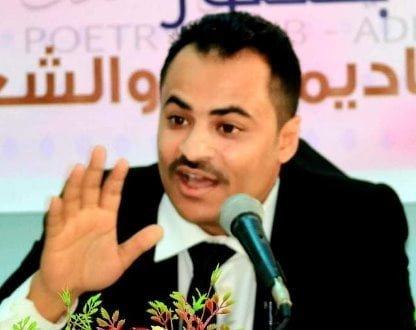 هشام باشا
