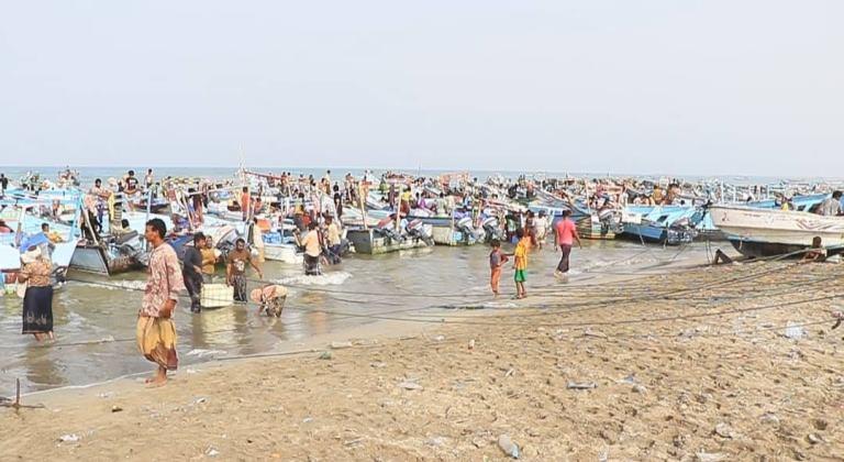 الهلال الإماراتي يؤهل 24 مؤسسة إنزال سمكي في الساحل الغربي