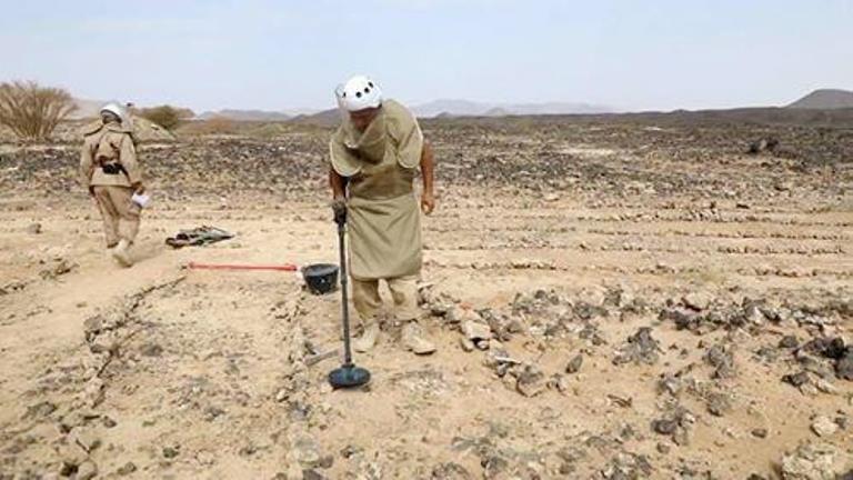 ألغام وعبوات الحوثيين الأرضية: انتزاع أكثر من 1531 خلال أسبوع