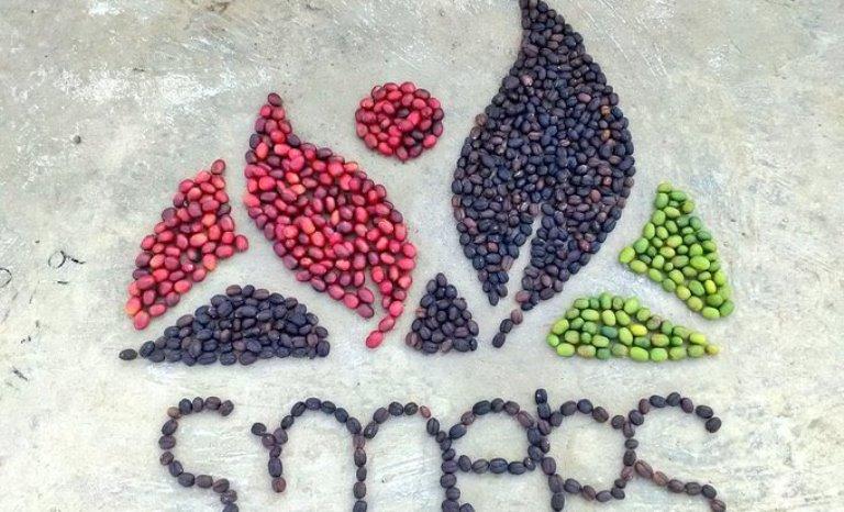 فيديو وصور: إبداعات لا تنتهي باحتفاء اليمنيين في اليوم العالمي للقهوة