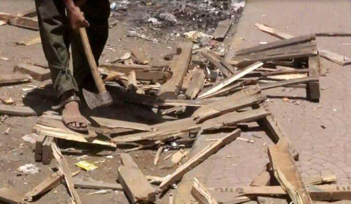 كيف أثرت الحرب في اليمن على الغطاء النباتي والتنوع الحيوي؟